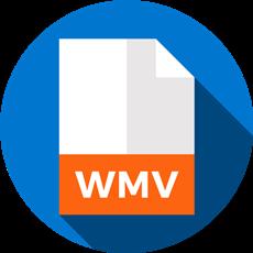 DVD WMV 変換