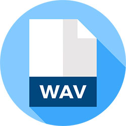 MP4 WAV 変換