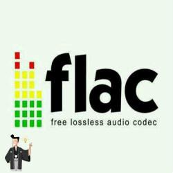 flac-icon
