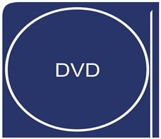 DVD FLV 変換