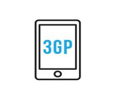 FLV 3GP 変換