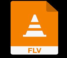 FLV AVI 変換