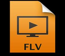 FLV WMV 変換