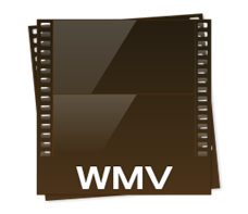 Mac WMV MP4 変換