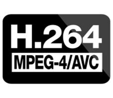 H264 再生
