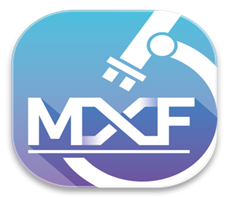 MXF 再生