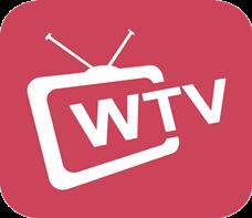 WTV 動画 変換